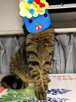 節分の猫_01.jpg